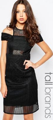 Studio 75 , Tall Zenia Dress With Cold Shoulder In Cutwork Fabric Black