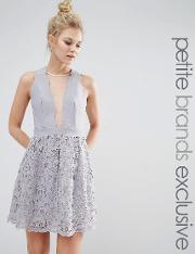 Little Mistress Petite , Scallop Plunge Front Skater With Mesh Panel And Lace Skirt Grey