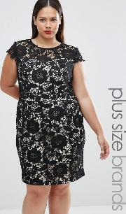 Lovedrobe , Plus Lace Dress With Contrast Underlay