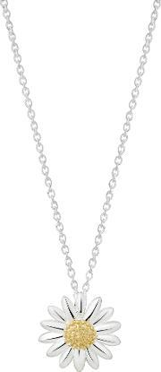 Daisy London , N2003 Ladies Necklace, Silver