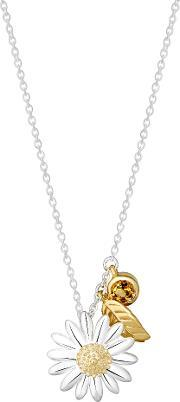 Daisy London , N2016 Ladies Necklace, Silver