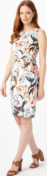 Phase Eight , Marguerite Floral Dress