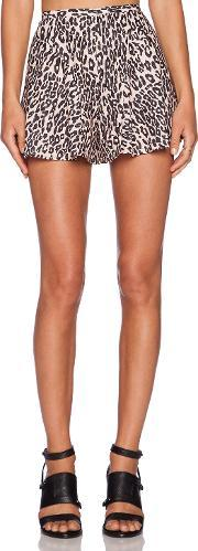 The Fifth Label , Wildfire Shorts